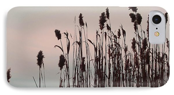 IPhone Case featuring the photograph Cat Tails At Sunset by Margie Avellino