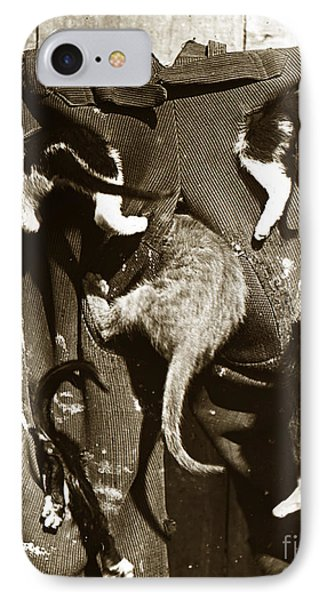 IPhone Case featuring the photograph Cat Tails By Henry King Nourse Circa 1900 Historical Photos by California Views Mr Pat Hathaway Archives