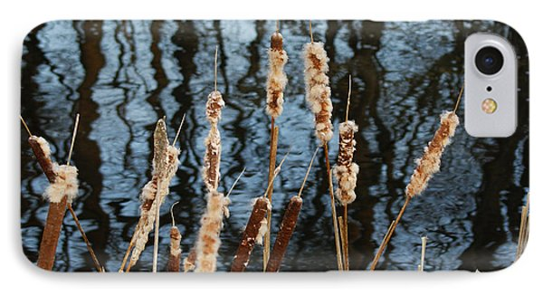 Cat Tails In Winter IPhone Case