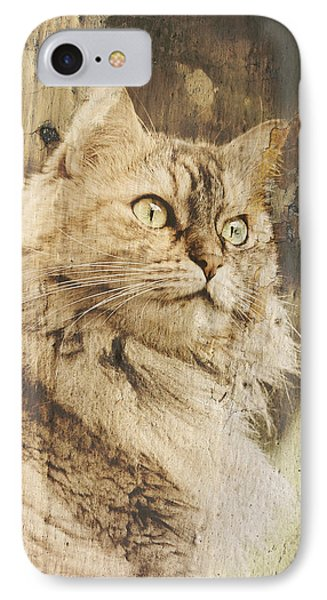 Cat Texture Portrait IPhone Case