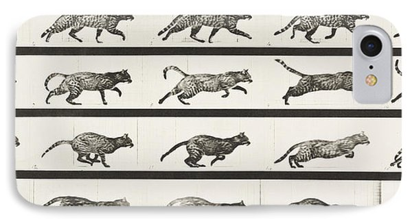 Cat Trotting Changing To A Gallop IPhone Case