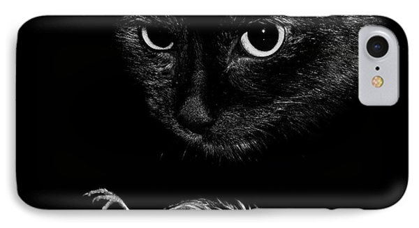Cat With A Dead Bird IPhone Case
