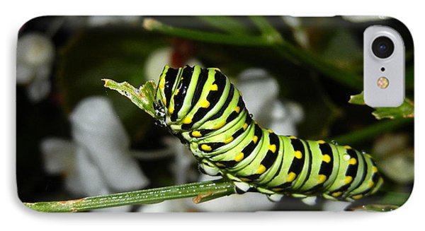 IPhone Case featuring the photograph Caterpillar Camouflage by Bill Swartwout