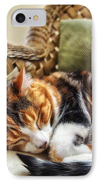 Catnap IPhone Case by Anthony Citro