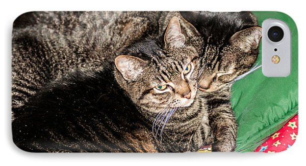 Cats Cuddling IPhone Case