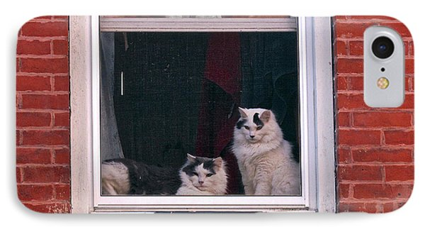 Cats On A Sill IPhone Case by Randi Shenkman