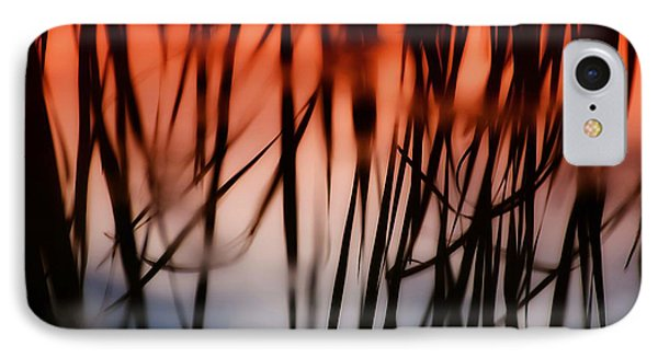 IPhone Case featuring the photograph Cattail Reflections by Beth Akerman