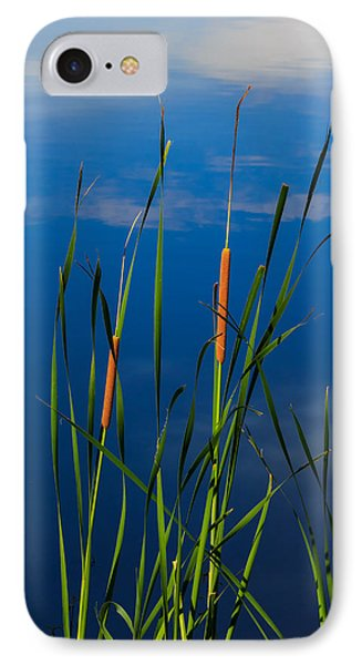 Cattails At Overholster IPhone Case by Doug Long