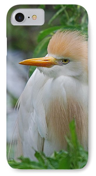 Cattle Egret Phone Case by Skip Willits