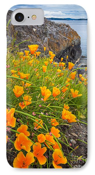 Cattle Point Poppies IPhone Case