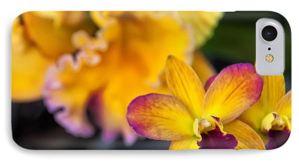Cattleya Orchid IPhone Case by Chris Flees