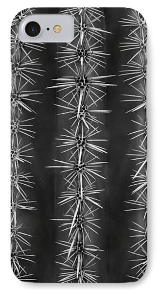 IPhone Case featuring the photograph Catus Needles by Glenn DiPaola