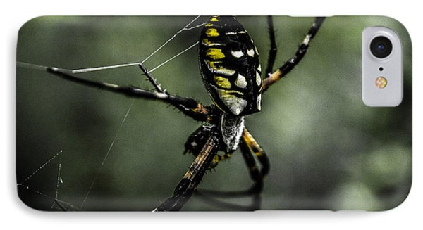 Caught In The Web Phone Case by Steven  Taylor