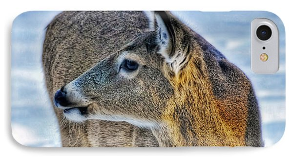 IPhone Case featuring the photograph Cautious Deer by Trey Foerster