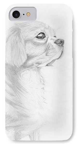 Cavalier King Charles Spaniel IPhone Case by David Smith