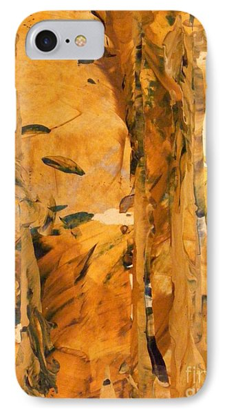 Cave Of Gold Phone Case by Nancy Kane Chapman