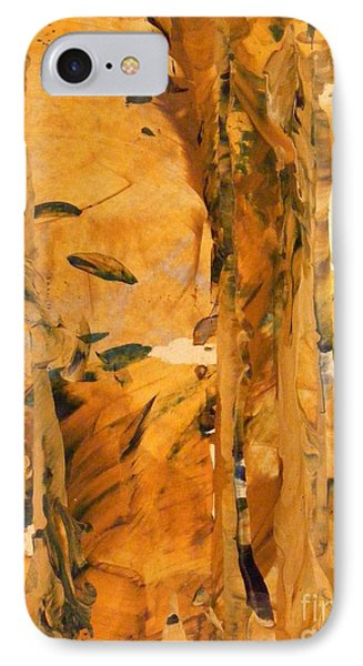 Cave Of Gold IPhone Case by Nancy Kane Chapman