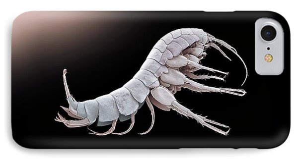 Cave Shrimp IPhone Case by Petr Jan Juracka