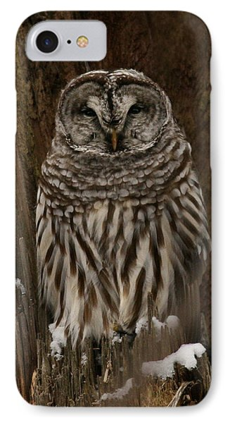 Cavity Dweller IPhone Case by Timothy McIntyre
