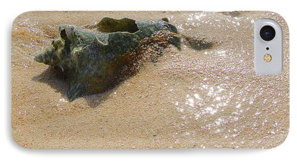 Cayman Conch #5 IPhone Case