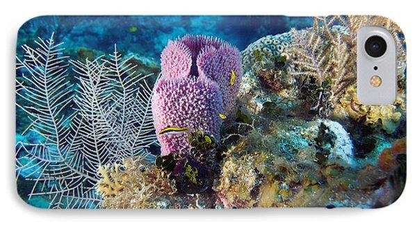 Cayman Reef IPhone Case