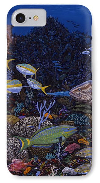 Cayman Reef Re0022 IPhone Case by Carey Chen