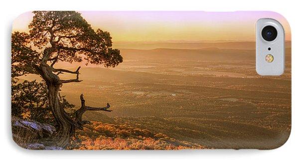 Cedar Tree Atop Mt. Magazine - Arkansas - Autumn IPhone Case by Jason Politte
