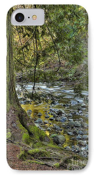 Cedar Tree By Kanaka Creek IPhone Case