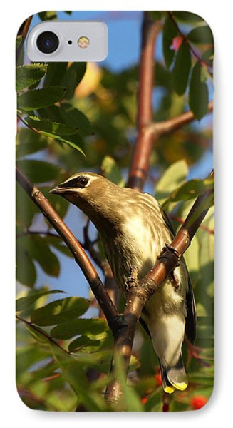 IPhone Case featuring the photograph Cedar Waxwing by James Peterson