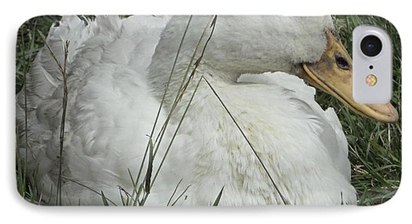 Celia Duck 2 IPhone Case