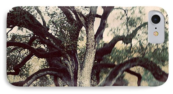 Cemetery Tree Vintage IPhone Case