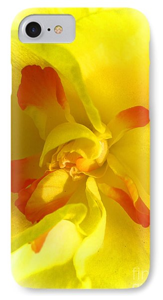 Center Daffodil Phone Case by Tina M Wenger
