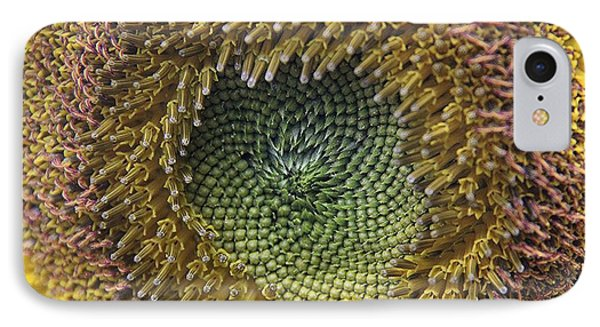 IPhone Case featuring the photograph Center Of The Sunflower by Yumi Johnson