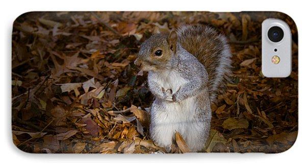 Central Park Squirrel Phone Case by Marta Grabska-Press
