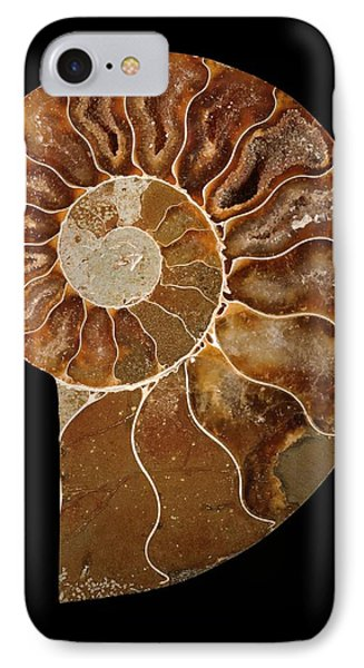 Ceratites Ammonite Fossil IPhone Case by Lawrence Lawry