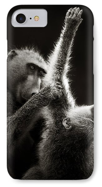 Chacma Baboons Grooming IPhone Case