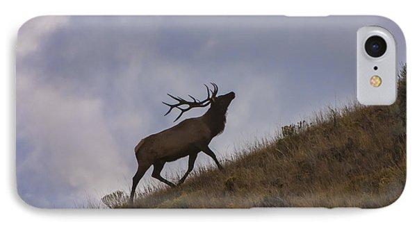 Challenge Of The Bull Elk Phone Case by Sandra Bronstein