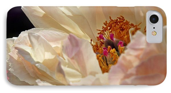 Champagne Peony IPhone Case by Lilliana Mendez