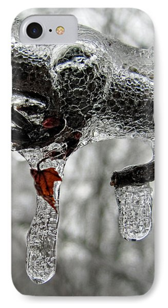 Change Of Seasons IPhone Case