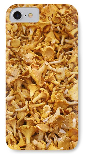 Chanterelle Mushroom IPhone Case by Anonymous