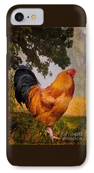 Chanticleer In Blue IPhone Case by Lois Bryan