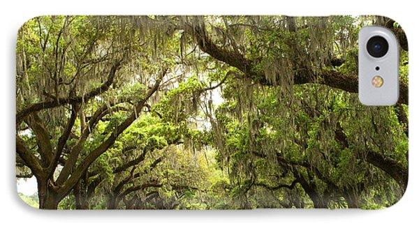 Charleston Avenue Of Oaks IPhone Case by Stephanie McDowell