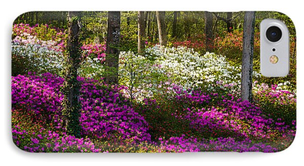 forest of flowers case Forest of flowersyou brad , franchising and distribution forest of flowers products and services ranging from plants and freshly cut flowers to customized.