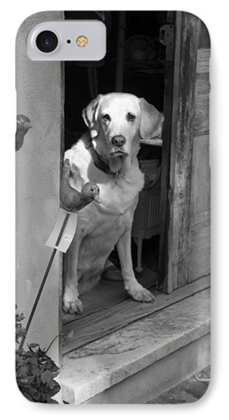 Charleston Shop Dog In Black And White Phone Case by Suzanne Gaff