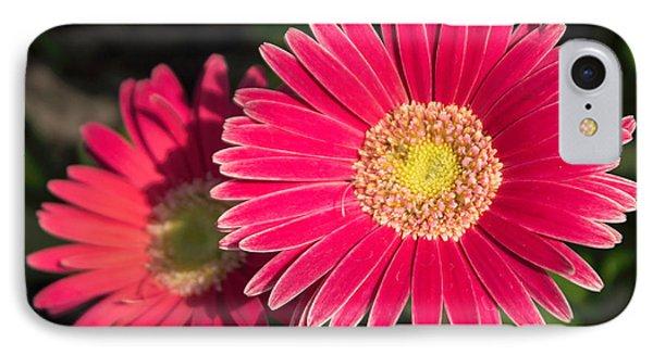 Cheerfulness IPhone Case by Arlene Carmel