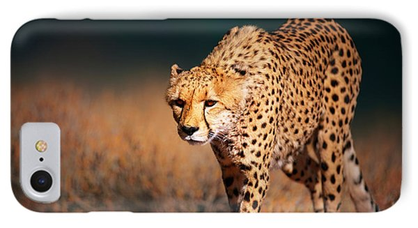 Cheetah Approaching From The Front IPhone Case by Johan Swanepoel