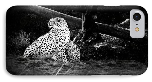 Cheetah IPhone Case by Camille Lopez