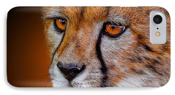 Cheetah Cub IPhone Case by Brian Stevens