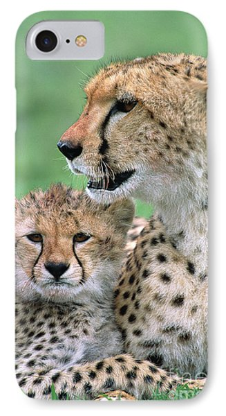 Cheetah Mother And Cub IPhone 7 Case