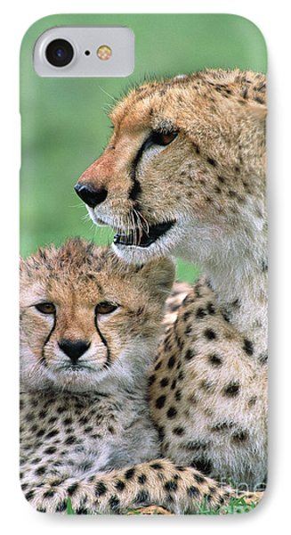 Cheetah Mother And Cub IPhone Case by Yva Momatiuk John Eastcott